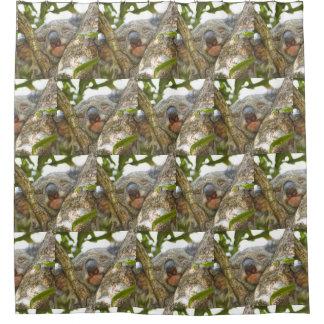 Rideaux De Douche Ours de koala mignon