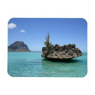 Roche en cristal composée de corail magnet souple