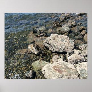 Roches et petites pierres à la plage de PNW