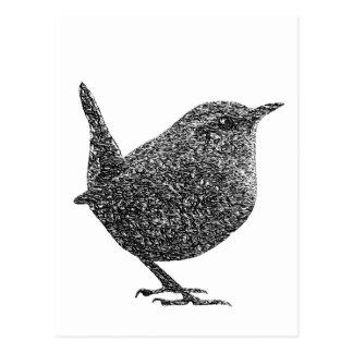 Roitelet (noir et blanc) carte postale