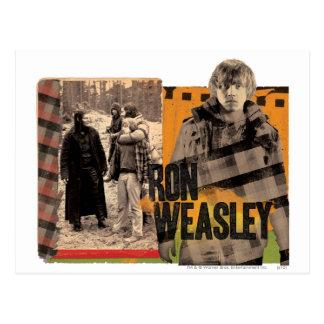 Ron Weasley 6 Carte Postale