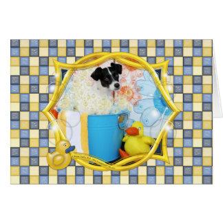 Rosco - Rat terrier Carte
