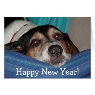 roscoe_newyear, bonne année ! carte
