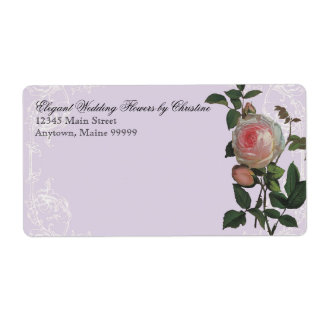 Rose botanique de rose, lilas - étiquettes de