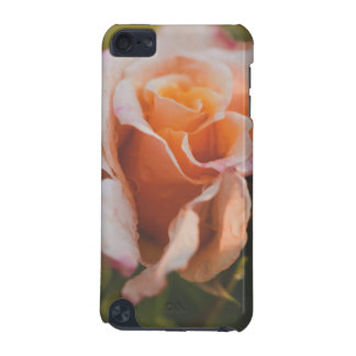 Rose d'hiver coque iPod touch 5G