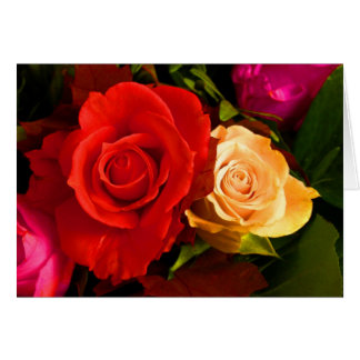 Rose jaune rouge carte de vœux