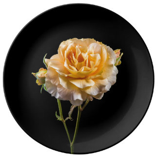 Rose jaune sur le noir assiette en porcelaine