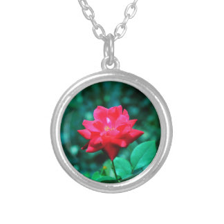 Rose rouge collier