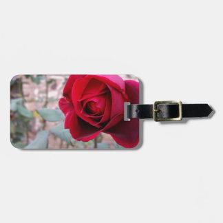 Rose rouge d'automne étiquette à bagage