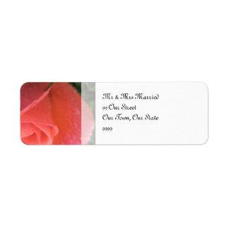 Rosebud van de lente Huwelijk Etiket