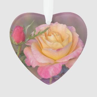 Roses jaunes et roses