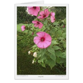Roses trémière carte