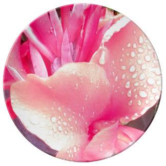 Roze van het Bord van het Porselein van de Lelie Porseleinen Bord