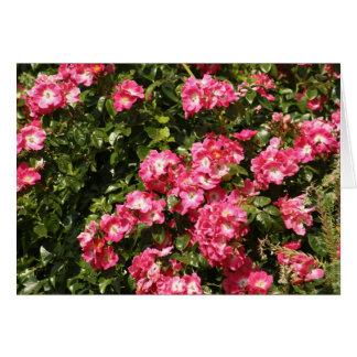 rozen, rozen, rozen kaart