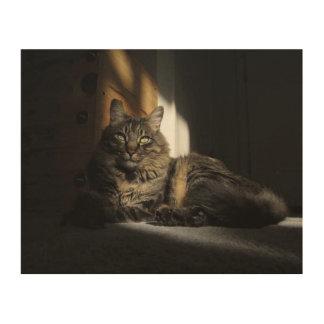 Rubans de chat de Kimber de toile en bois de Impression Sur Bois