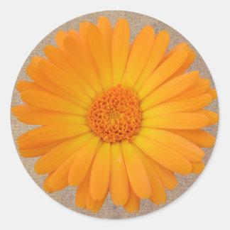 Rustieke Oranje Gerber Daisy Round Stickers Seals