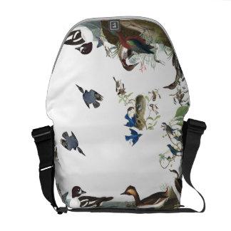 Sacoche Collage d'Audubon de sac messenger à faune