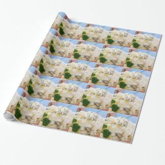 Salade de pomme de terre avec la saucisse et la papier cadeau