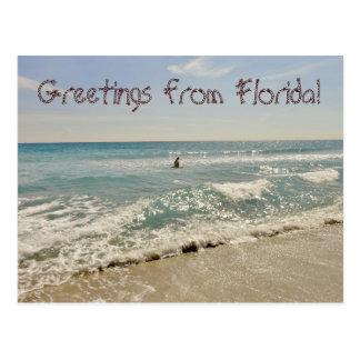 Salutations de la Floride Miami Carte Postale