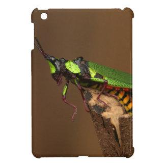 Sauterelle Étuis iPad Mini