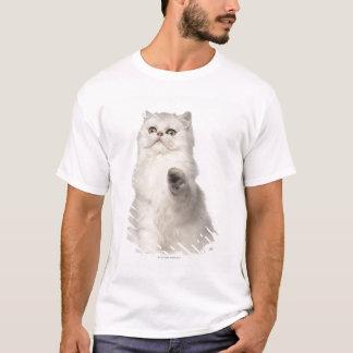 Séance de chat persan t-shirt