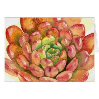 "Sedeveria succulent"" aquarelle rouge ""rose par DLB Carte"