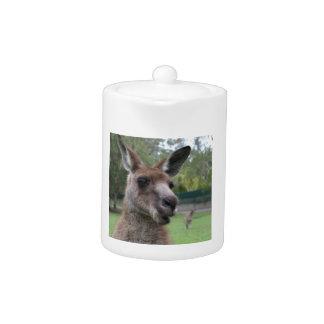 Selfie de kangourou