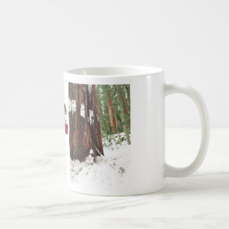 Séquoia dans la tasse de neige