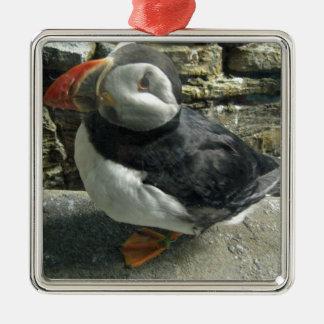 Série pinguin ornement carré argenté