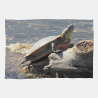 Serviette de tortue