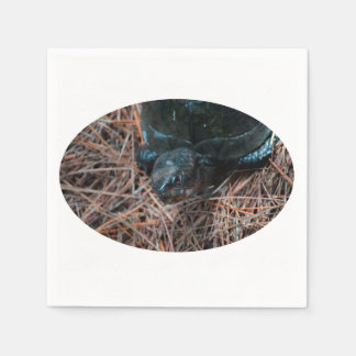 Serviette En Papier animal de reptile observé par rouge de tortue de