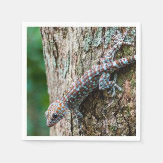 Serviette En Papier Lézard mignon de Gecko de Tokay