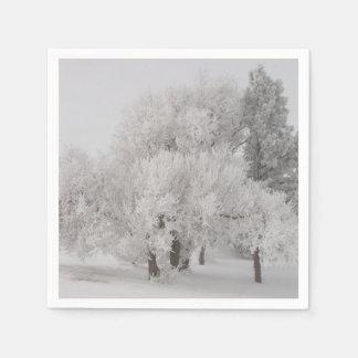 Serviette En Papier L'hiver Frost a couvert des arbres