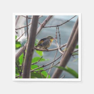Serviette En Papier Oiseau dans un arbre