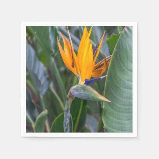 Serviette En Papier Oiseau de fleur de paradis