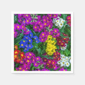 Serviette En Papier Primevères colorées