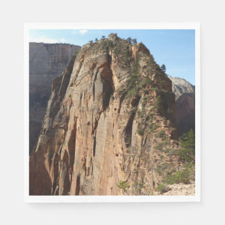 Serviette Jetable Anges débarquant au parc national de Zion