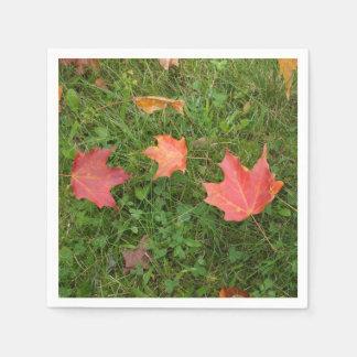 Serviette Jetable Feuille d'érable d'automne sur l'herbe