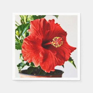 Serviette Jetable Fleur rouge de ketmie