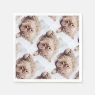 Serviette Jetable Penny le foie orange Shih Tzu sur la serviette du