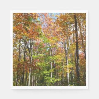 Serviette Jetable Photographie de paysage d'automne de la forêt II