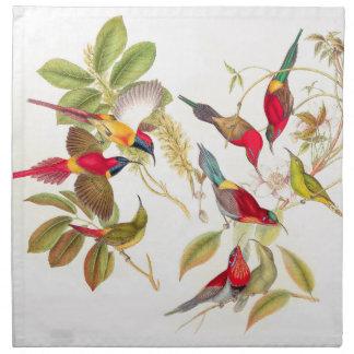 Serviettes De Table Animaux de faune d'oiseaux de Sunbird botaniques