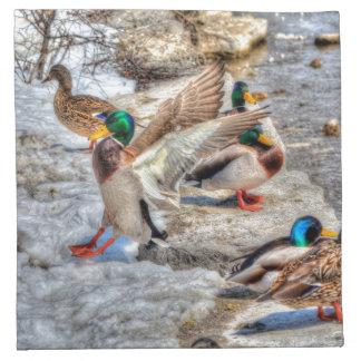 Serviettes De Table Cadeau 4 de faune de Mallard Drake d'atterrissage