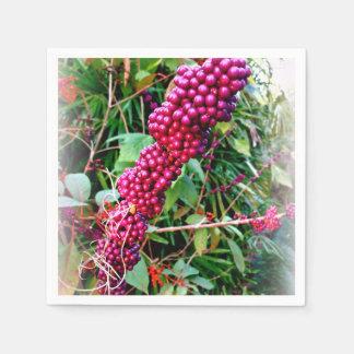 Serviettes En Papier Américain Beautyberry aux jardins la Floride de