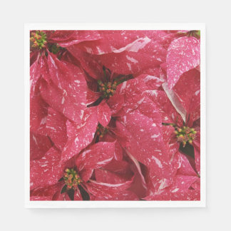 Serviettes En Papier Poinsettias