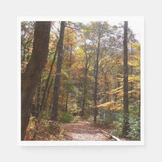 Serviettes En Papier Traînée ensoleillée d'automne en parc d'état de