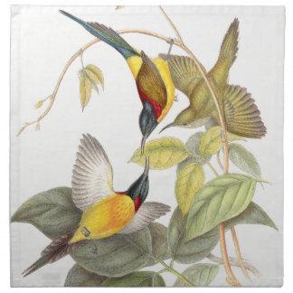 Serviettes En Tissus Animaux de faune d'oiseaux de Sunbird botaniques
