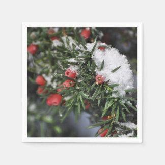Serviettes Jetables Baies et neige rouges de Noël