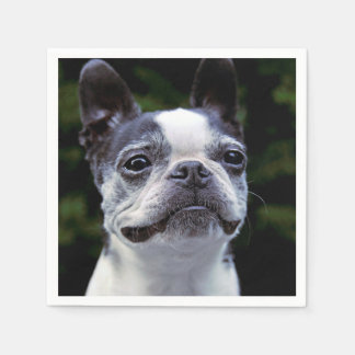 Serviettes Jetables Boston Terrier