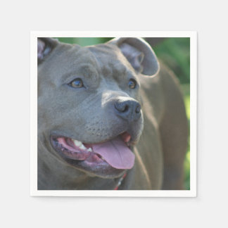 Serviettes Jetables Chien de terrier de Pitbull